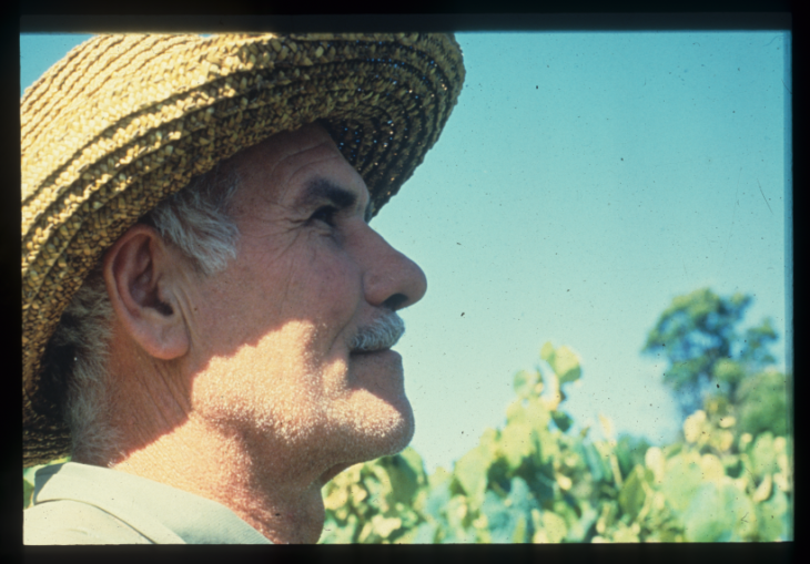 Risultati immagini per Dichiarazione dei diritti dei contadini all'ONU video