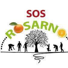 Gli amici di Crocevia: SOS Rosarno,