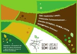 Semi locali, semi legali