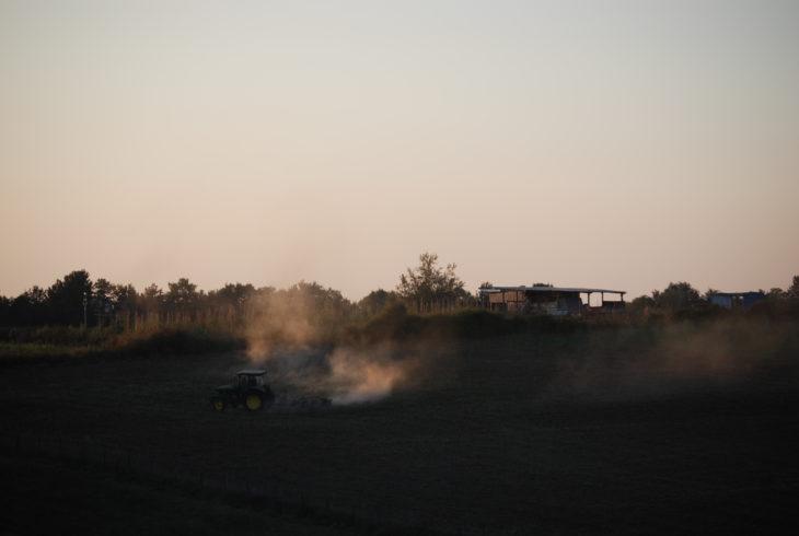 I numeri dell'Agricoltura Contadina spiegati da Antonio Onorati 9