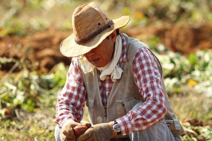 """Comunicato Stampa ARI: Il Rapporto """"Cambia la Terra"""" sui pesticidi in Italia e la deriva del """"Bio industriale"""""""