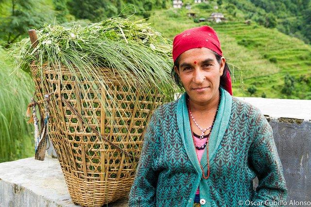 Comunicato stampa ECVC, ARI e La Via Campesina: i diritti dei contadini all'Assemblea Generale delle Nazioni Unite 1