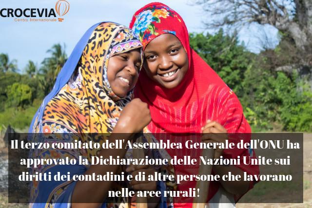 Associazioni e ONG denunciano l'astensione dell'Italia durante l'adozione della Dichiarazione sui Diritti dei contadini all'ONU: ennesima occasione persa in tema di diritti e agricoltura